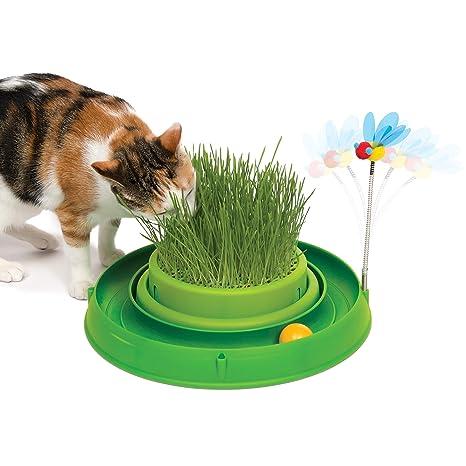 Catit Play Circuit - Juguete Interactivo para Gato con Hierba, Color Verde