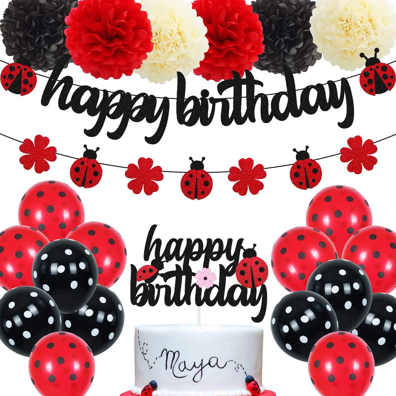 Ladybug Birthday Decorations Ladybird Happy Birthday Banner Ladybeetle Cake Topper Black Red Latex Balloon Pom Pom Flowers for Ladybug Theme Bday Party Supplies