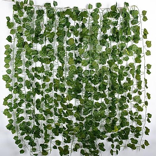 Plantas exterior resistentes al frio affordable palmera - Plantas colgantes de exterior ...