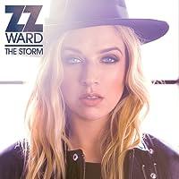 STORM, THE (LP)