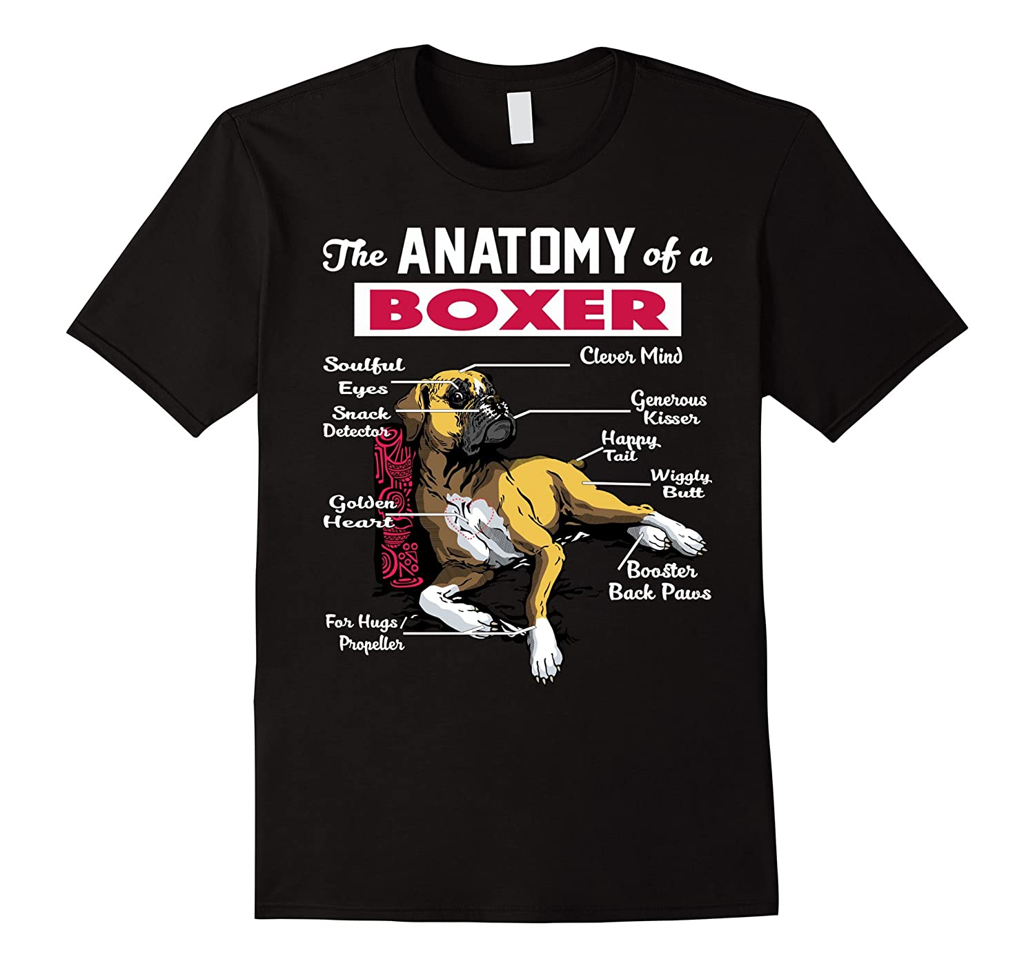 Anatomy of a boxer