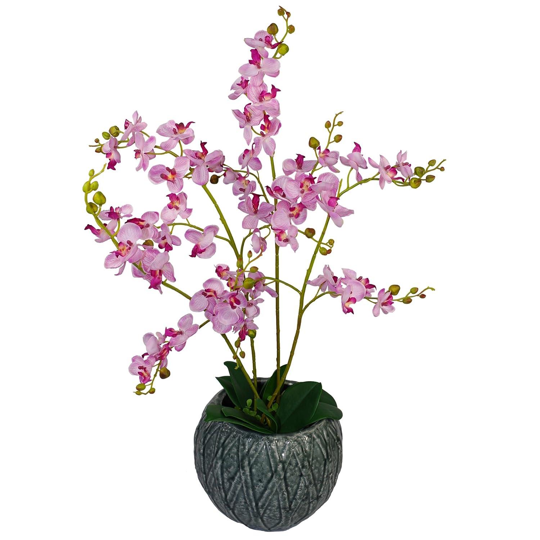 60 cm Artificielle Orchid Luxe - Triple Tige - Rose Plante Réaliste en Plastique Noir Pot LeafUK