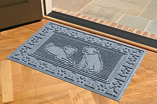 AquaShield Two Labs Mat, 2 by 3-Feet, Bluestone