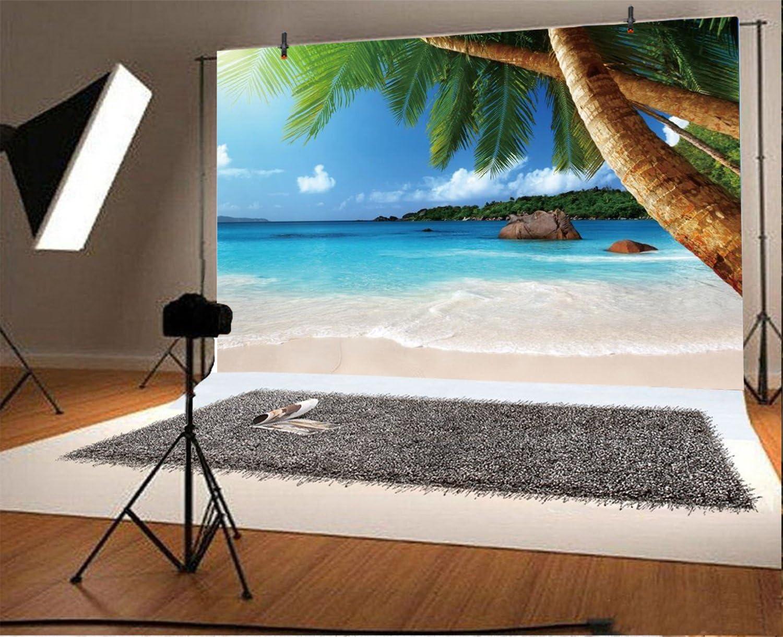 Baocicco 5 Tropical Seascape Palmen Hintergrund 1 5 X Kamera