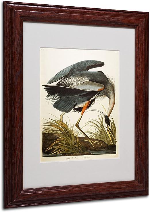 Made in U.S.A Giclee Prints Bird Art Repro Green Heron by John James Audubon