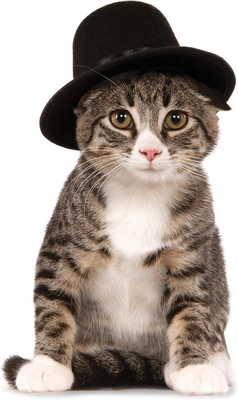 Rubie's Top Hat for Your Pet, Medium/Large : Pet Supplies