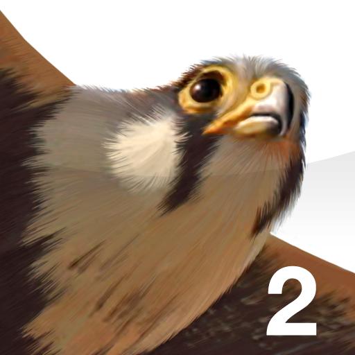 (iBird Pro 2)