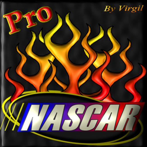 Stock Car Auto Racing Pro