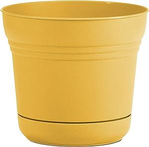 "Bloem SP1423 Saturn Planter w/Saucer 14"" Earthy Yellow"