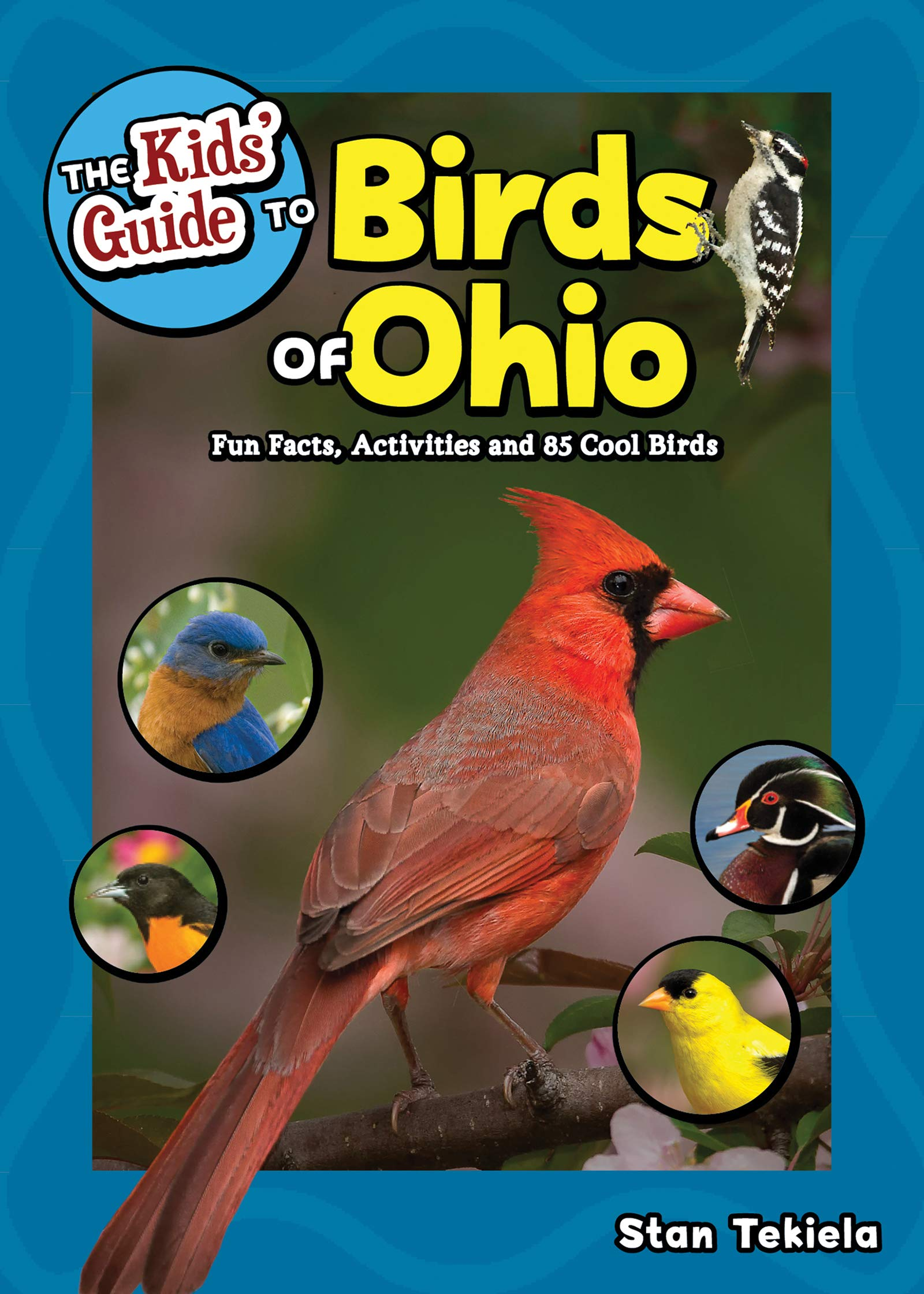 The Kids' Guide to Birds of Ohio: Fun Facts, Activities and