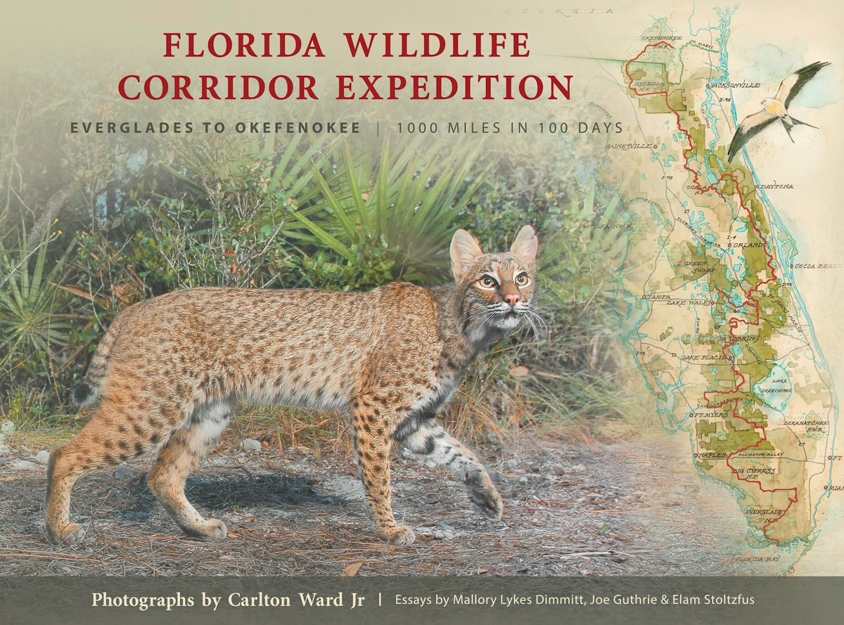 florida wildlife corridor expedition carlton ward jr florida wildlife corridor expedition carlton ward jr 9780982639627 com books