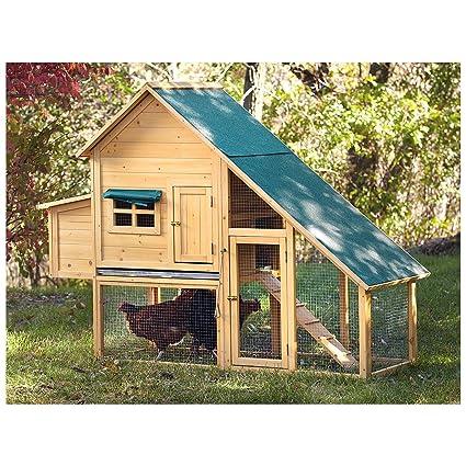 Castlecreek Farmhouse Wooden Chicken Coop   2 To 3 Hens