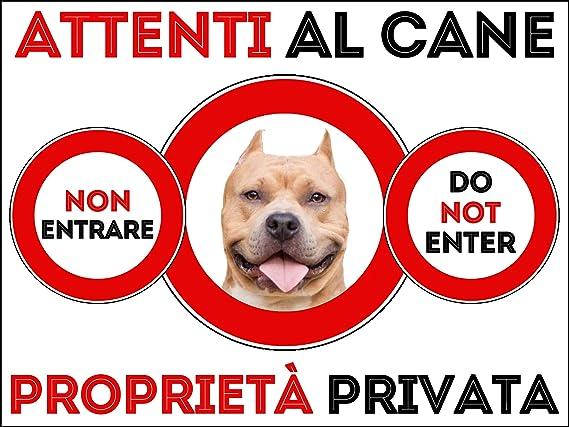 15X20 LOVELYTILES Pitbull ATTENTI al Cane Area PROTETTA Targa Cartello INSEGNA PVC Gialla