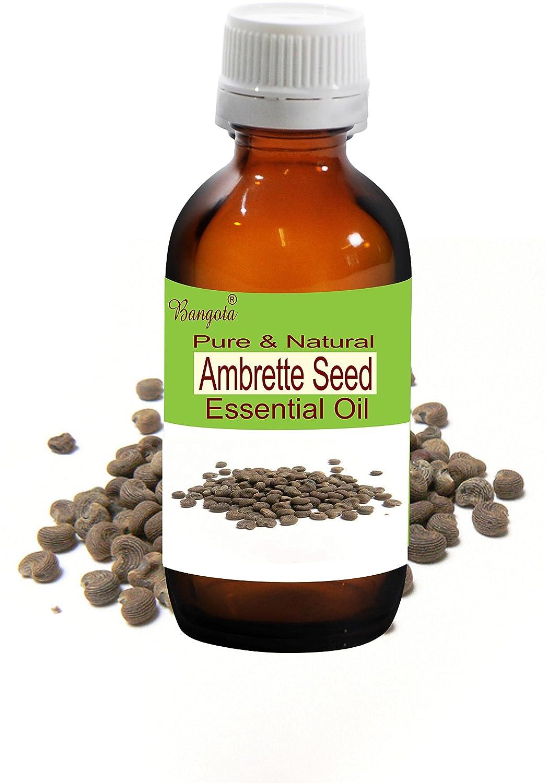 Ambrette Seed Oil- Pure & Natural Essential Oil- Abelmoschus moschatus (10 ml (0.34 Oz)) Bangota