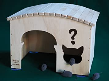 Why tamaños XL, casas para gatos Profesional y rascadores Blitzen Made in Italy 100%: Amazon.es: Hogar