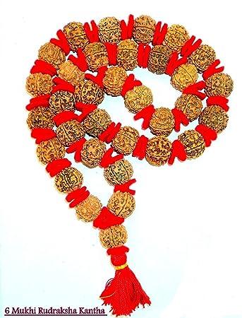 6-8mm Rudraksha beads bag of 100