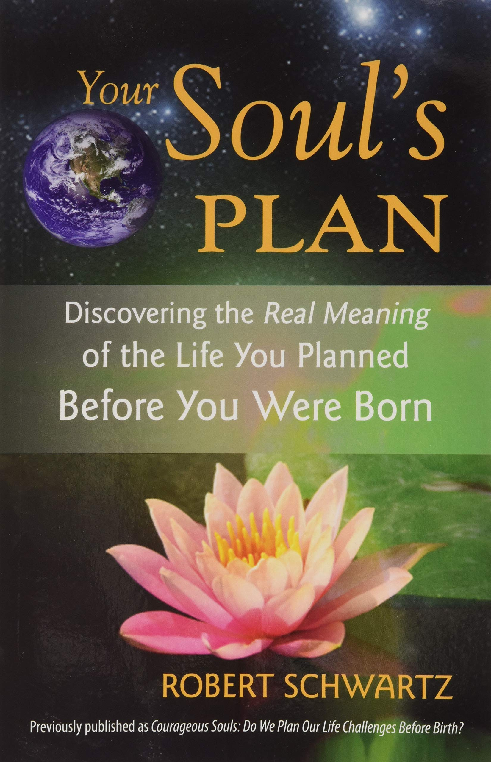 Amazon Your Souls Plan Discovering The Real Meaning Of The