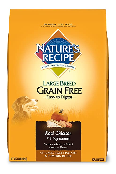 Amazon natures recipe large breed grain free dry dog food natures recipe large breed grain free dry dog food chicken sweet potato pumpkin forumfinder Choice Image