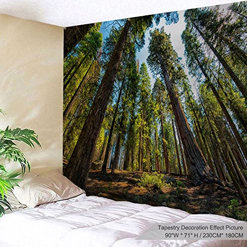 PROCIDA Home Tapestry Wall Hanging Nature Art Polyester Fabric Tree Theme, Wall Decor for Dorm Room, Bedroom, Living Room, Nail Included – 90 W x 71 L 230cmx180cm – Cedar