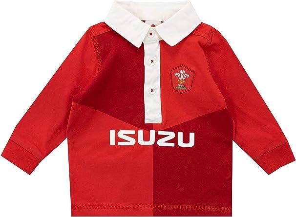 WRU Camiseta de Manga Larga para Niños Bebés Wales Rugby: Amazon ...
