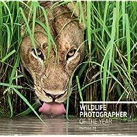 Wildlife Photographer of the Year: Portfolio