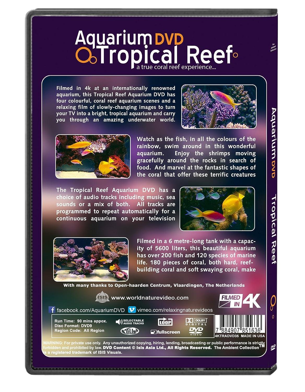 Amazon com: Aquarium DVD - Tropical Reef Aquarium - Filmed