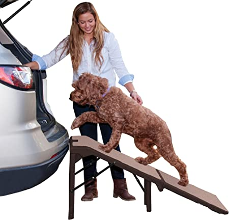 Pet Gear Free Standing Ramp for Cats