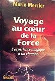 Voyage au coeur de la force : l'expérience magique d'un chaman