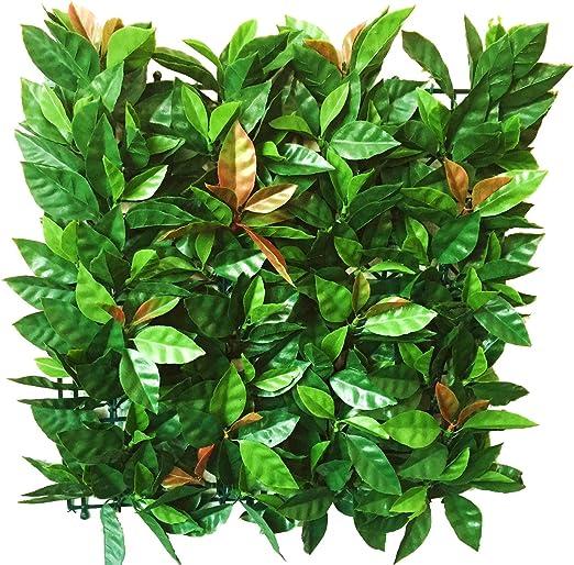Seto de Laurel Rosa, 1m² a Medida, 100% PVC, Seto Artificial con una ocultación Fuerte, Color Verde/Rojo/Rosa 50 x 15 x 50 cm: Amazon.es: Jardín