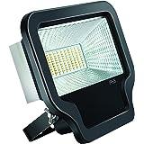 Eveready LEDFL030I6-01 30-Watt LED Flood Light (Black)