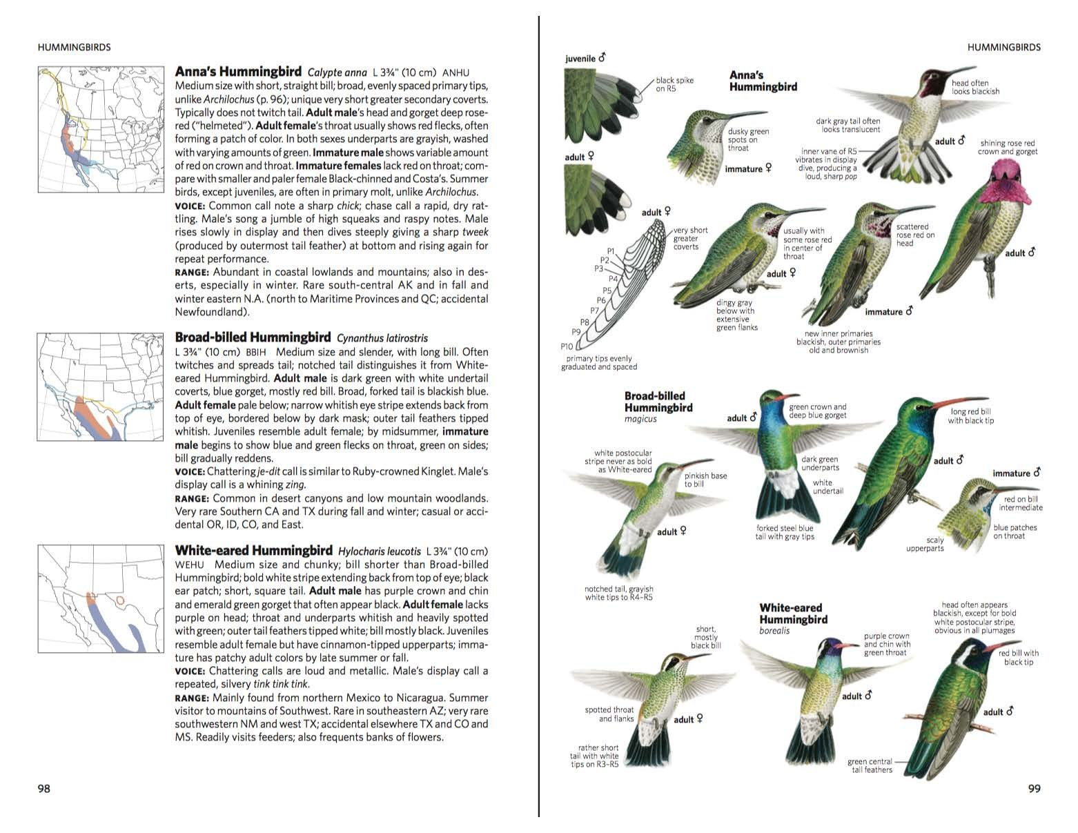 National Geographic Field Guide to the Birds of North