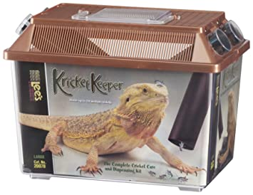 Image Led Feed Crickets To Reptiles 1