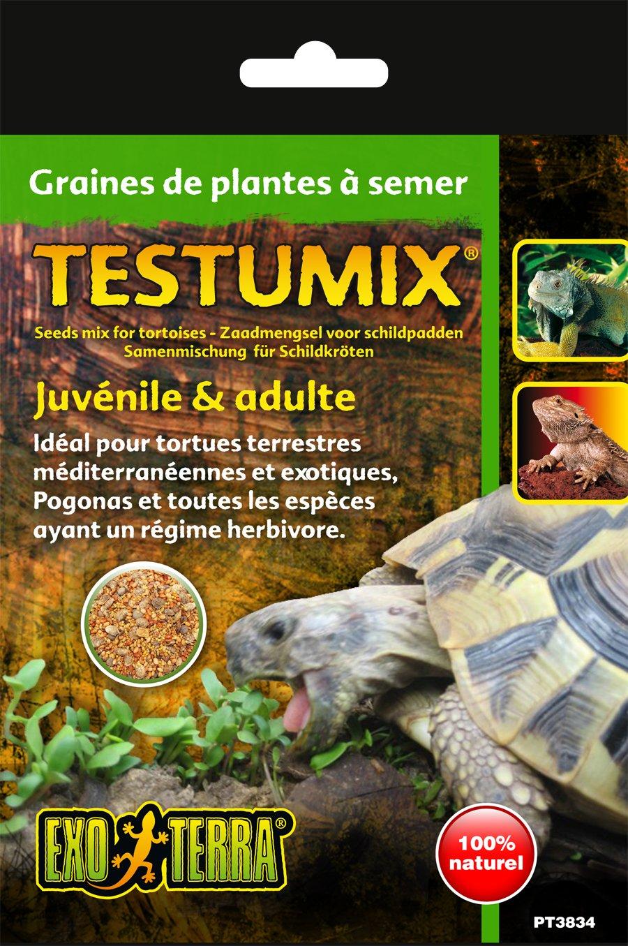 Exoterra Graines Tortue Sachet de 75 g pour Reptiles et Amphibiens PT3834