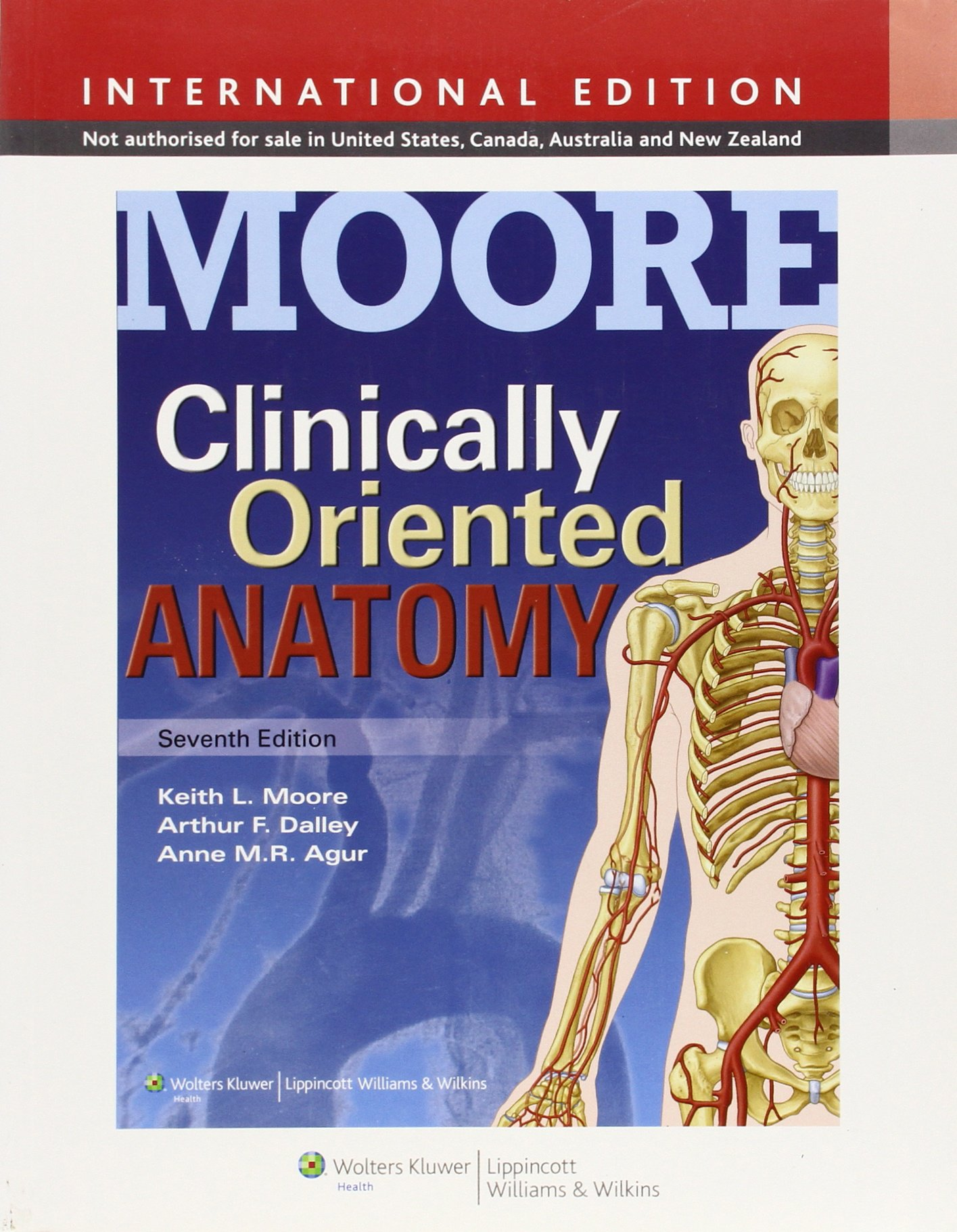 Clinically Oriented Anatomy: Amazon.co.uk: Keith L. Moore, Anne ...