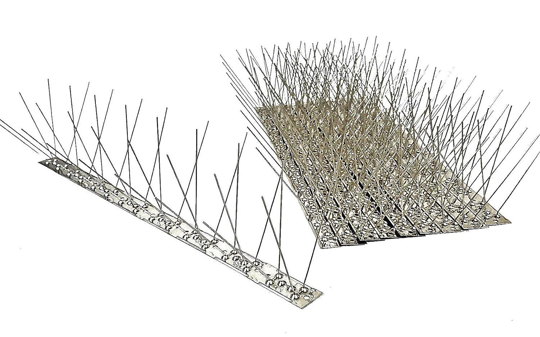 Taubenabwehr Taubenspikes 2-reihig auf Edelstahlleiste 5 m PS 10 St. Vogelschutz DIREKT VOM HERSTELLER