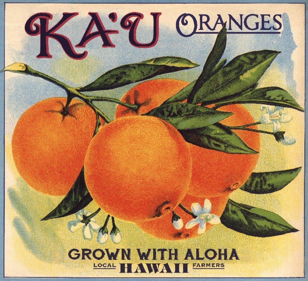 人気TOP ハワイ – Print KA ' Print U Oranges – Citrusクレートラベル Giclee Canvas Tote Bag LANT-74242-TT B01DUSGG8I 24 x 36 Giclee Print 24 x 36 Giclee Print, ナカヘチチョウ:3692d4a0 --- arianechie.dominiotemporario.com