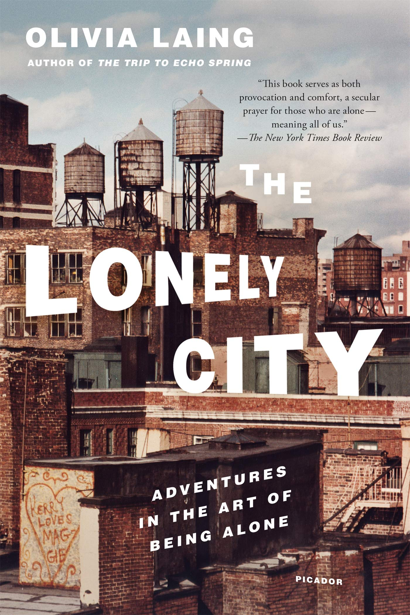 Image result for the lonely city by olivia laing