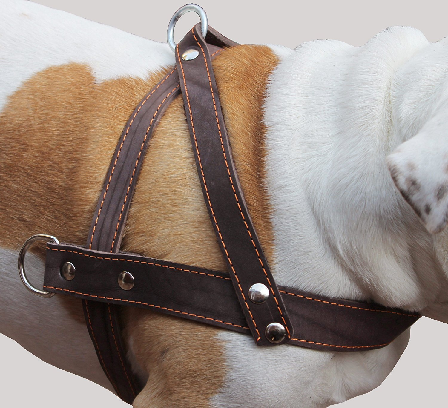 Genuine Brown Leather Dog Pulling Walking Harness XLarge. 35-39.5 Chest 1.5 Wide Straps