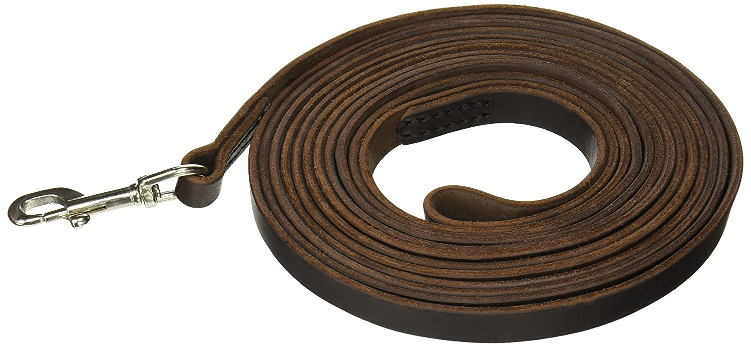 Brown Dean & Tyler Stitched Track Dog Leash with Handle and Hardware, 20-Feet by 3 4-Inch Wide, Brown