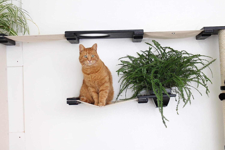 CatastrophiCreations Cat Mod Garden - Estantería para Gatos ...