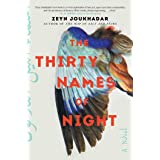 The Thirty Names of Night: A Novel
