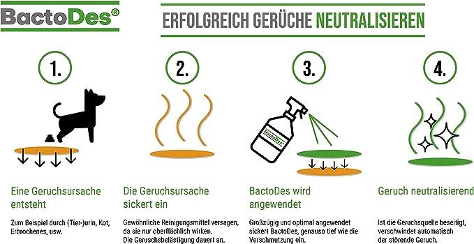 bactodesspezial-1L concentrado=mind 2l solución de uso - olor de ...