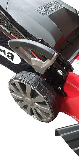 Ama - Cortapelos Profesional con Motor Honda TRX 481H 48 cm ...