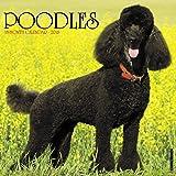 Just Poodles 2018 Calendar