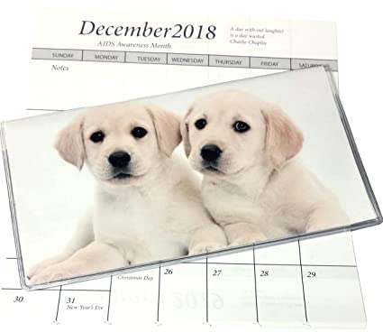 2019 2020 lab puppies 2 year plus pocket calendar planner with notepad