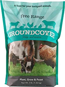 Barenbrug Free Range GroundCover Forage Seed Mixture Ideal for Chickens, Game Birds, Goats, and Sheep, 3 lbs, Blue