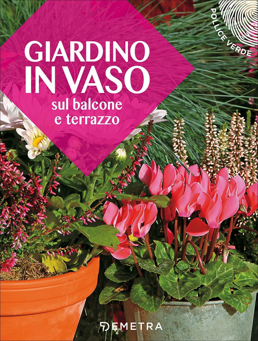 Giardino In Vaso Sul Balcone E 9788844048655 Amazon Com Books