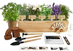 Hand-Mart 5 Herb Seeds Window Starter Kit, Chamomile Cumin Lemon Balm Lavender Fennel, Including Everything-Soil, Pots, 3 Garden-Tool, Pruner, Sprayer, Plant Labels, DIY Craft for Kids Adults