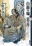白銀の墟 玄の月 第四巻 十二国記 (新潮文庫)