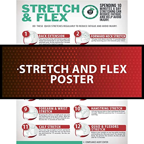 Stretch and Flex 10 Minute Excercise Poster for Work Home and Gym - Range  of Motion